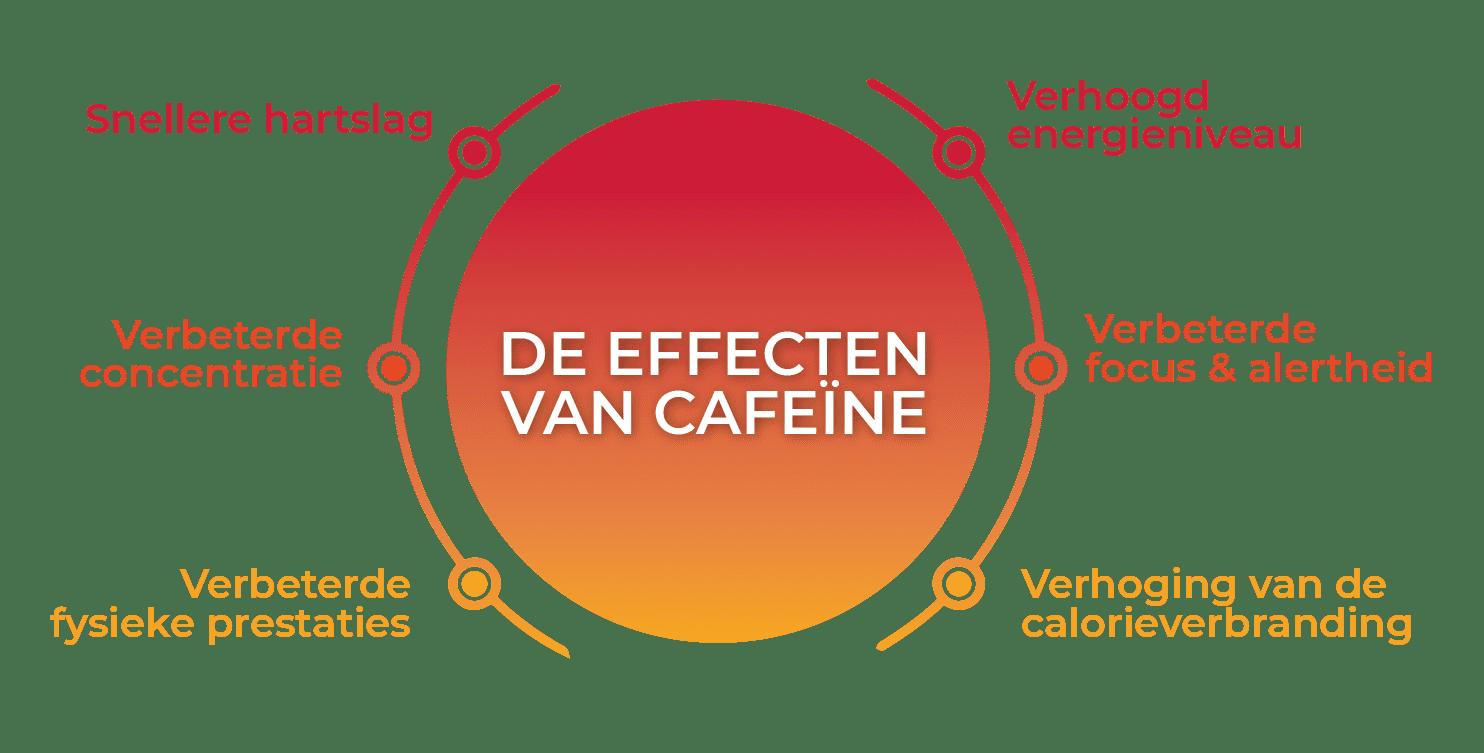 De effecten van Cafeïne: snellere hartslag, verbeterde concentratie, verbeterde fysieke prestaties, verhoogde energieniveau, verbeterde focus & alertheid, verhoging van de calorieverbranding